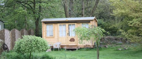 Squirrel wood campsite and lodges
