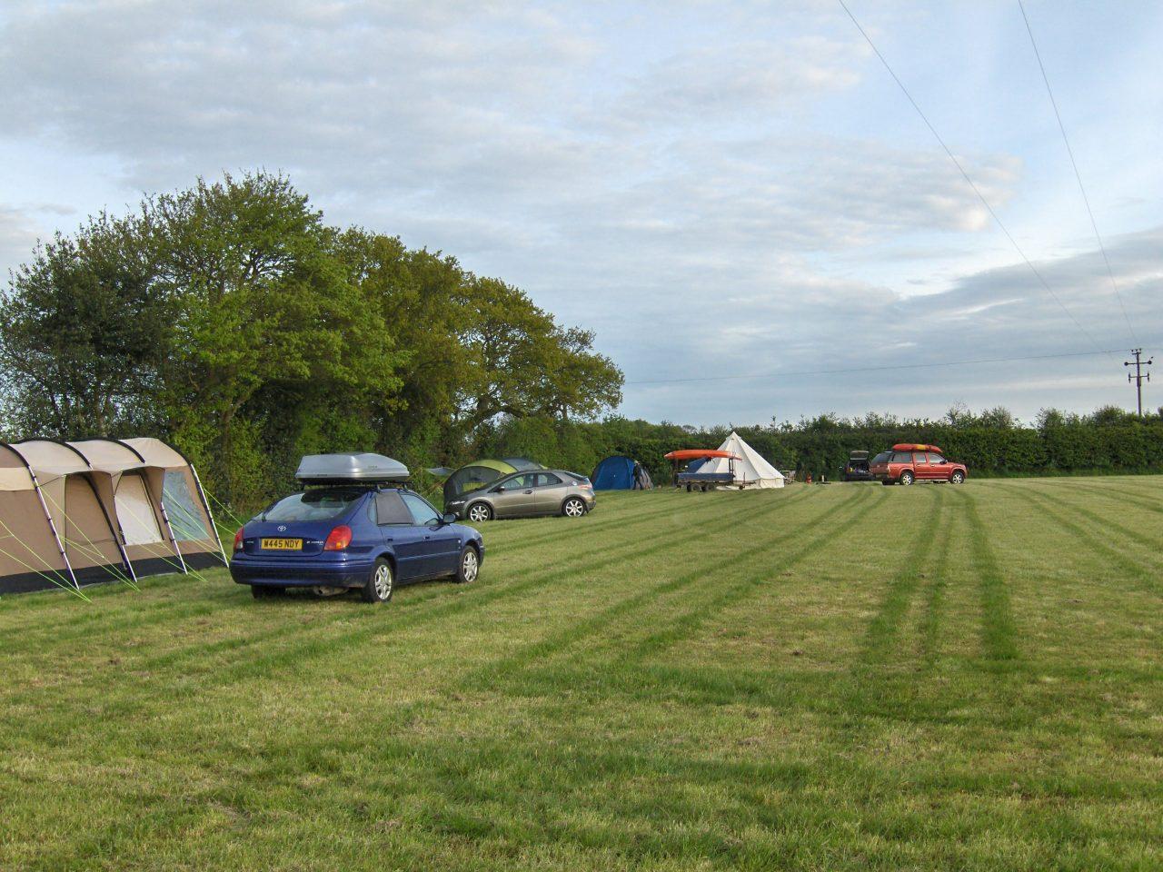 Baconsthorpe Meadows