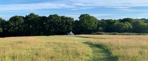 Star Field Camping and Glamping