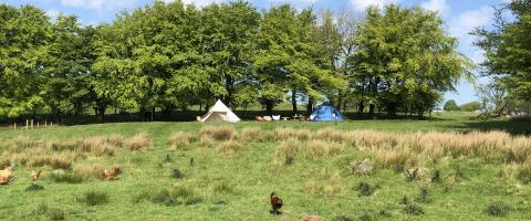 Ffynnonwen Farm Wild Camping