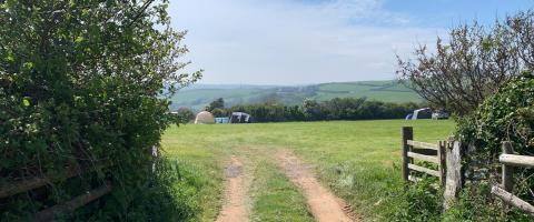 Wilton Farm